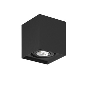 Strop ALEJO S1 max. 1x35W, GU10, 230V, tmavě černá (matná struktura) RAL 9005 small 0