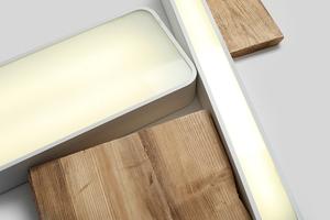 Stropní lampa LAXO 60x20 - bílá small 1