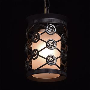 Závěsná lampa Magdalena Země 1 Hnědá - 382016401 small 2