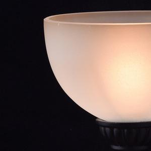 Nástěnná lampa Magdalena Země 1 Hnědá - 382020301 small 5