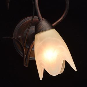 Nástěnná lampa Aida Země 1 Hnědá - 323023801 small 5