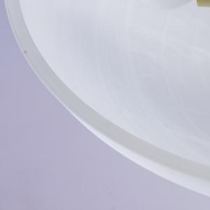 Závěsná lampa Aida Země 3 Hnědá - 323012603 small 4