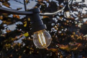 Zahradní žárovka Garland 20m 20 držáků nástrojů černá small 6
