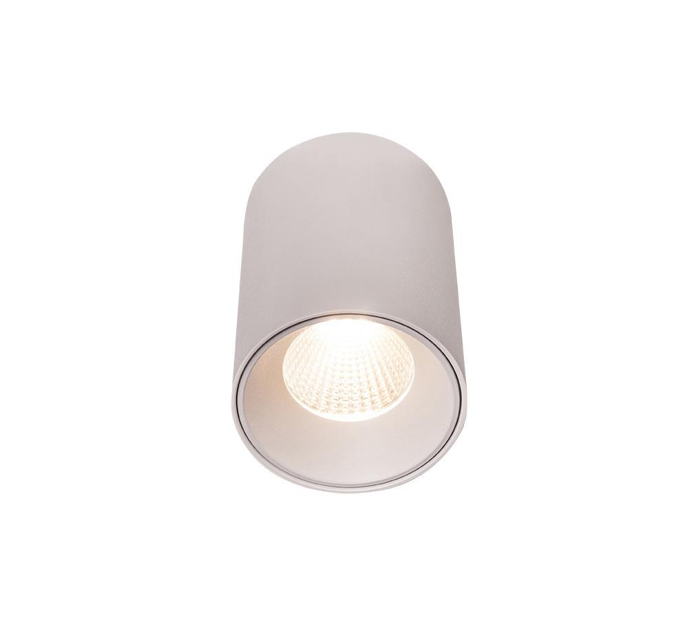 Čip C0160 Stropní bílá 840LM Max Light