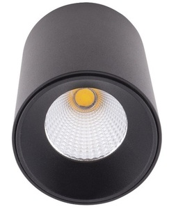 Čip C0163 Stropní černá 920LM Max Light small 1