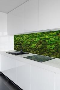 Fototapeta Moss, Sobi škrábání na zdi, zelené zdi doma, dekorace small 1
